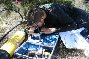 A primary goal of ecophysiologists is to capture plant response to varying environmental conditions: here I record plant water status using a scholander pressure chamber.