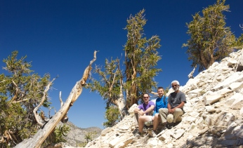 Pic. 3: Gratuitous selfies with ancient trees. From left to right: Adam West, Rob Skelton, Ed February. Photo credit: Dr. Adam West, August 2014.